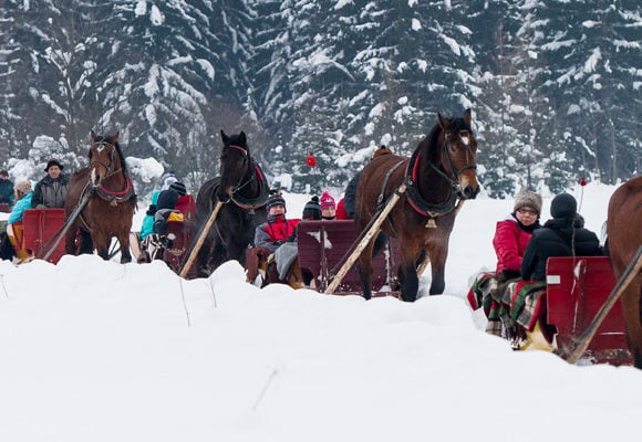 Traditional Horse Sleigh Ride in Zakopane