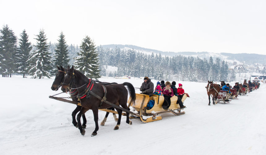 Highland sleigh rides in Zakopane – COT is preparing for the 2019/2020 winter season